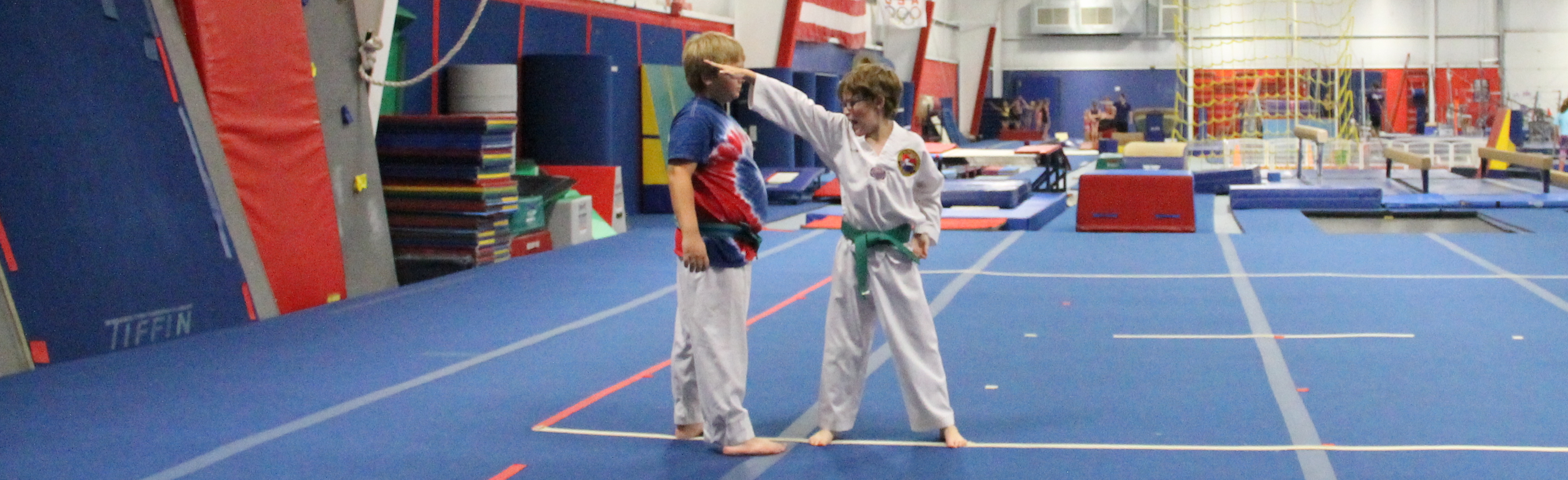 TKD Int:Adv Program Photo